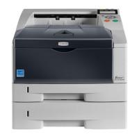 Kyocera FS-1300DT